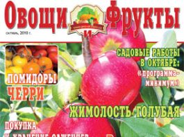 Журнал №10 2010 года