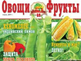 Журнал №1 2011 года
