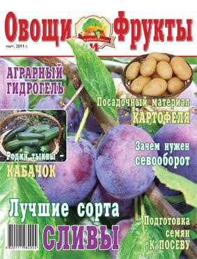 Журнал №3 2011 года
