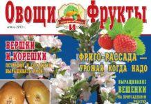 Журнал №4 2013 года