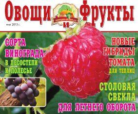 Журнал №5 2013 года