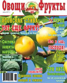 Журнал №6 2011 года