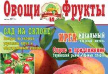 Журнал №7 2011 года