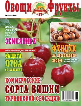 Журнал №6 2016 года