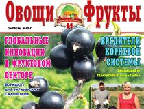 Журнал №10 2015 года