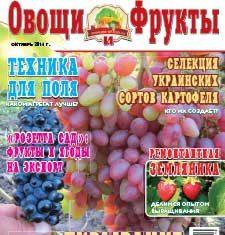 Журнал №10 2016 года