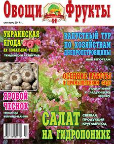 Журнал №10 2017 года