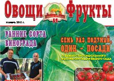 Журнал №11 2015 года
