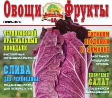 Журнал №11 2017 года